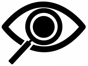 SEO Audit Search